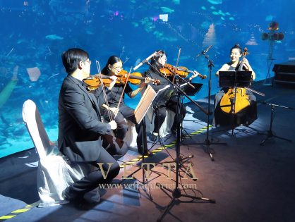 Jimmy's Wedding at RWS Sea Aquarium