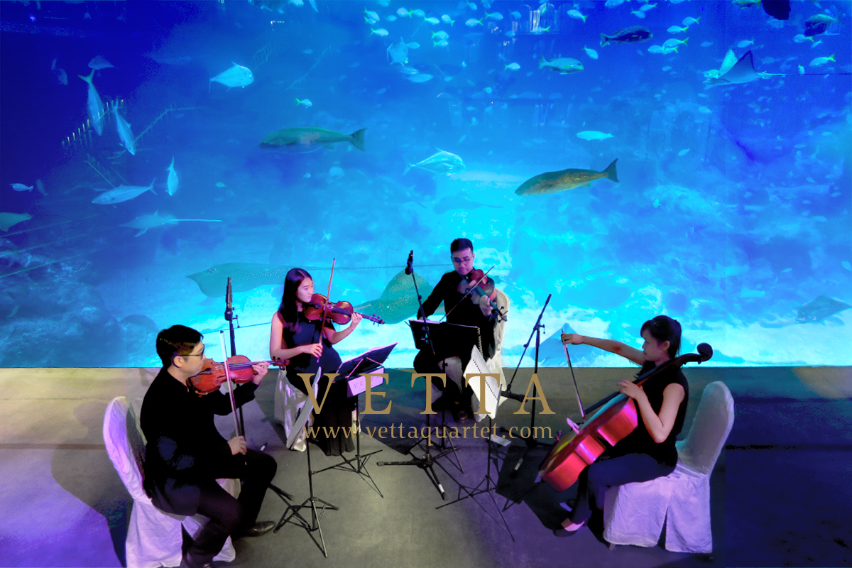 String Quartet playing background music at Wedding at S.E.A. Aquarium singapore Sentosa