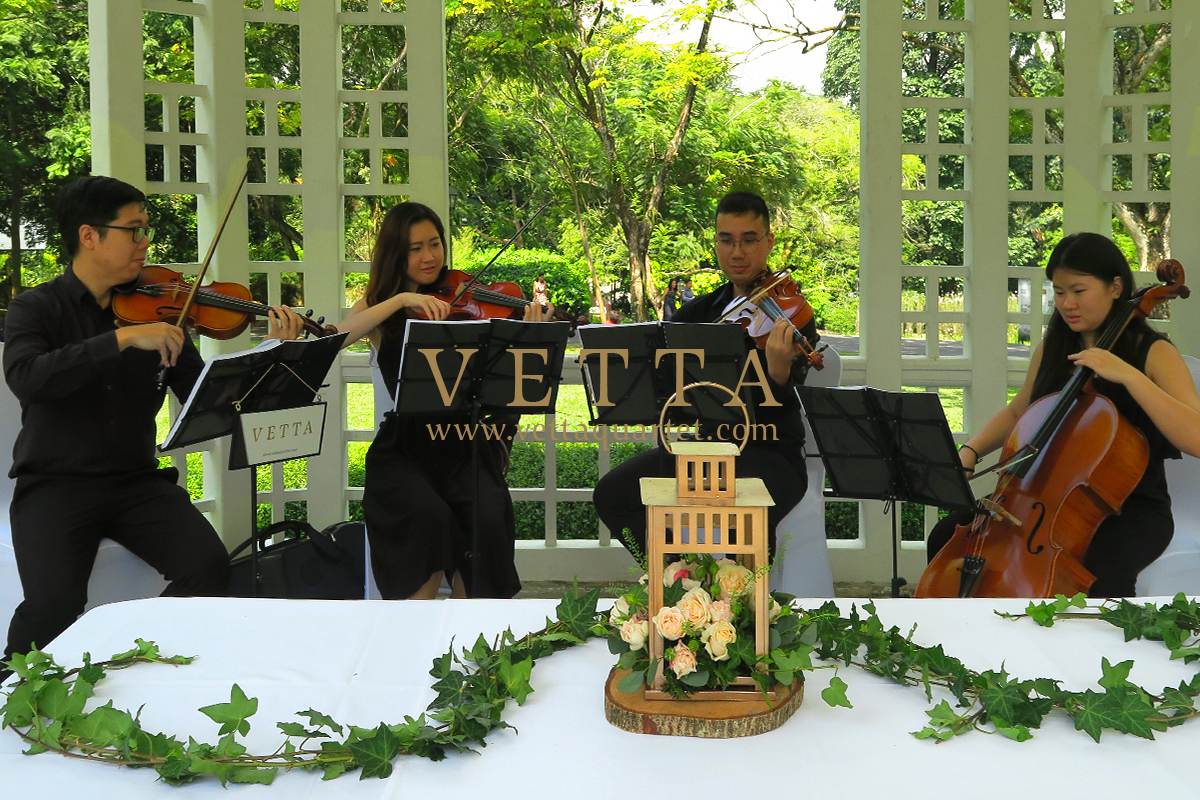 Jeannie's Wedding at Botanic Gardens Bandstand