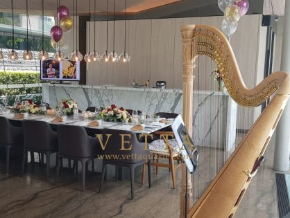 Harp Solo for Birthday Celebration at Leedon Heights