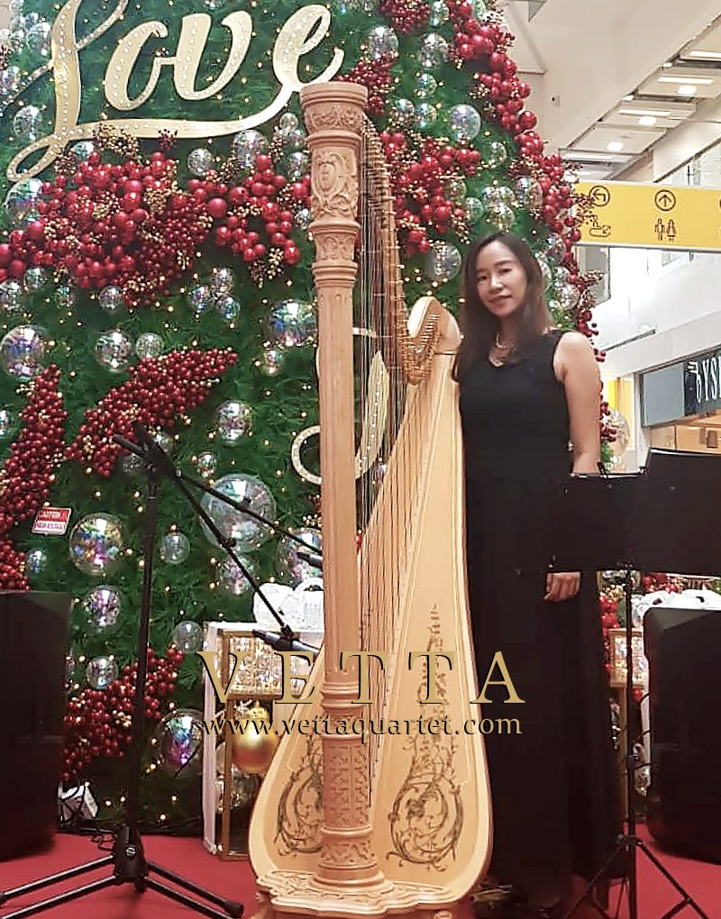 Solo Harp Booking at Clarke Quay Central