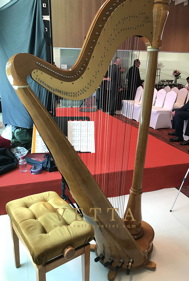 Harpist Dora play for Corporate Event