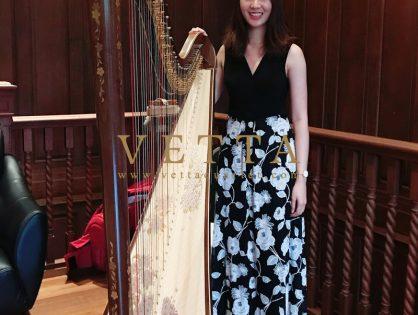 Harp Solo for Private Celebration at The Seaview Condominium Club House