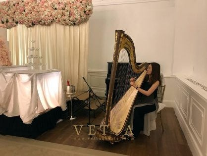 Harp Solo for Eunice's Wedding at Fullerton Hotel, Straits Room